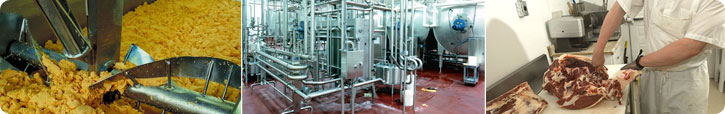 Dairy & Food Processing