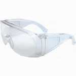 Radnor Visitor Safety Glasses - Case of 12